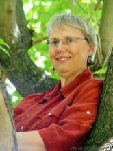 [Photo of Heather Rose Jones in a tree]